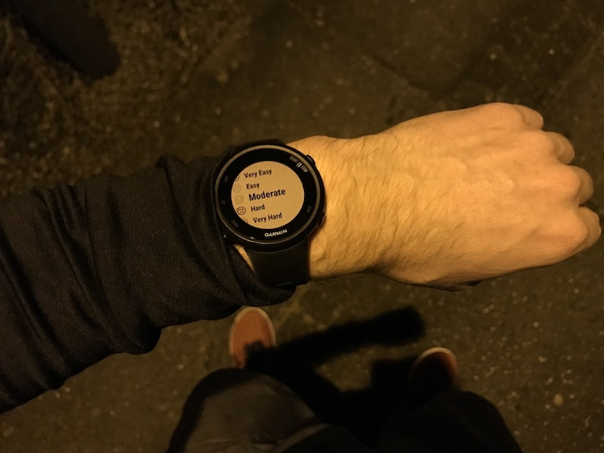 garmin forerunner 45 rate your run